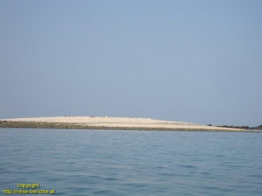 dann geht es zurück zum Boot und weiter auf eine kleine Sandbank, wo uns Joes Kollege eine Krabbe aus ihrer Sandhöhle gräbt und stolz präsentiert, ein gutes Fotomotiv, dann wird sie wieder freigelassen.