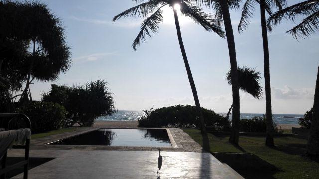 Abschied von Sri Lanka
