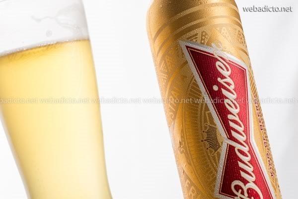 cerveza budweiser-4215