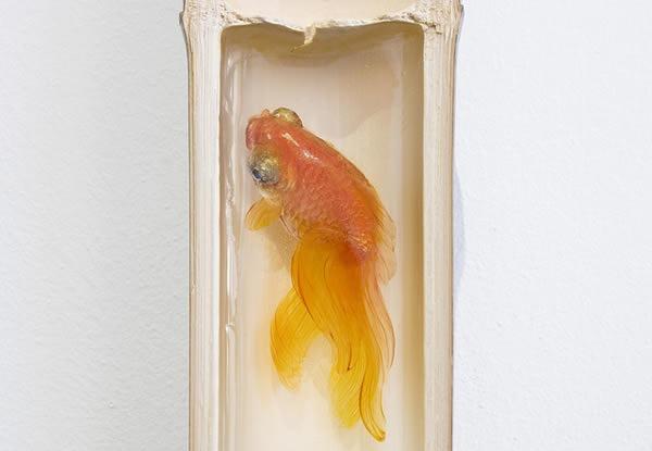 pinturas-goldfish-hiperrealistas-riosuke-fukahori-06
