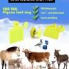 Etichette elettroniche animali