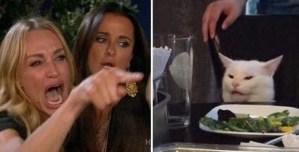 Com'è nato il meme della donna che urla al gatto? Ecco la sua incredibile storia e il video originale