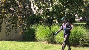 pest control specialists