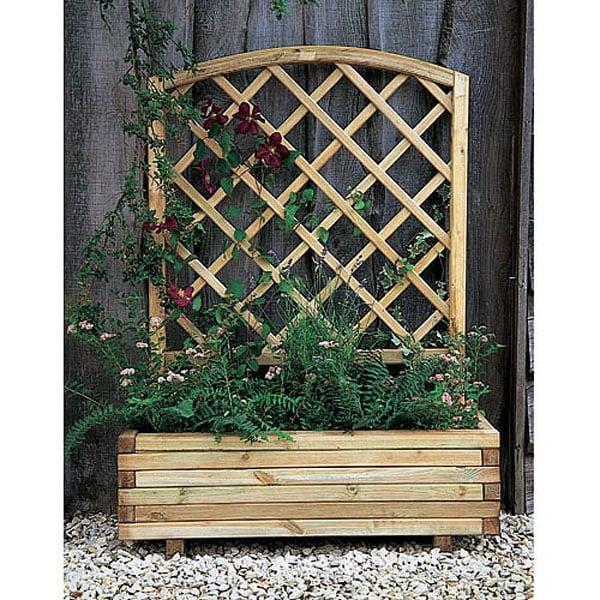 Decorative Hanging Baskets Plants