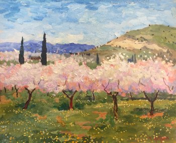 Almond Blossom, Benissa, Spain