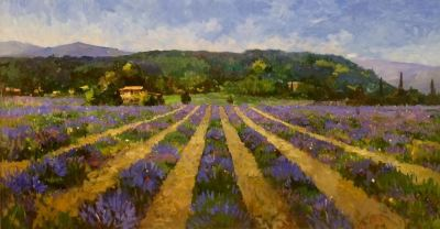 new lavender, 60 x 32 in