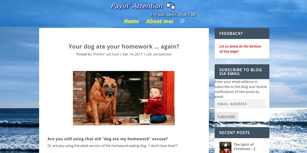 Dog Ate Your Homework?