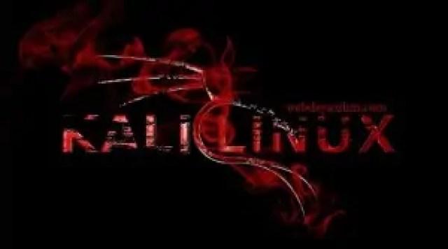 Kali Linux Güvenlik Açığı Analizi