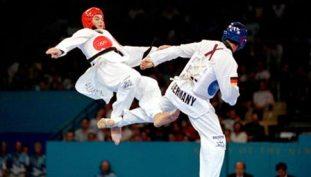 Equipe nationale de taekwondo (photo -koora)