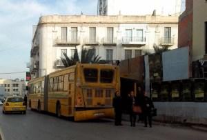 Bus Transtu (1)