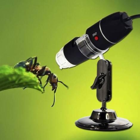 Image microscopio-usb-800x-2-mega-pixeles-20761-MLM20196423945_112014-O.jpg
