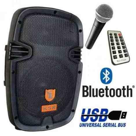 Bafle Bocina Amplificado Recargable 8  Bluetooth Y Microfono en Web Electro