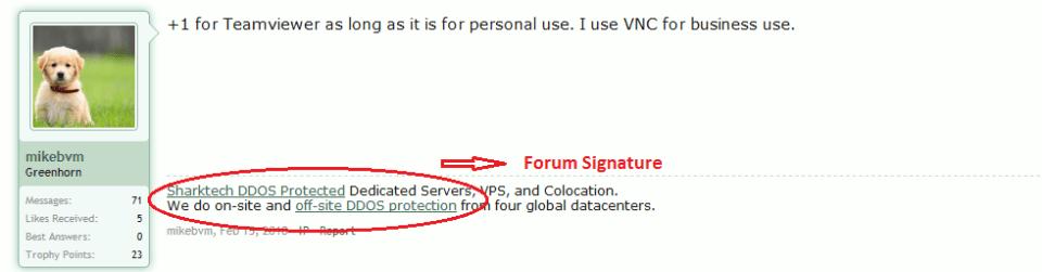 Online forum signatures