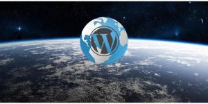 One year World of WordPress