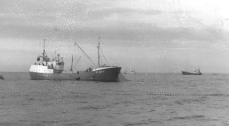 Ringnotsbåt