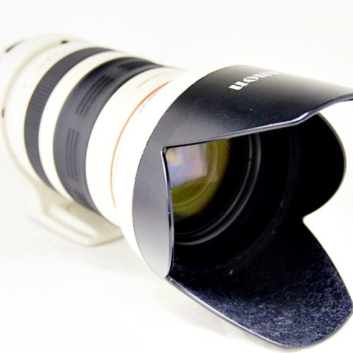キャノンのカメラレンズ「EF35-350mm F3.5-5.6L USM」買取実績