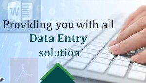 data entry services in delhi /ncr