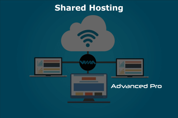 WM Host shared hosting advanced pro