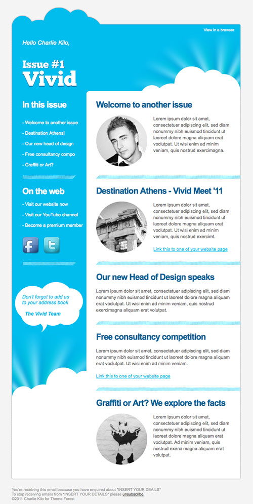Vivid Email Newsletter Design