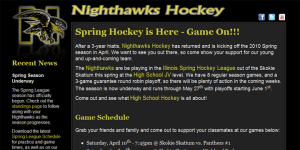 Nighthawks Hockey Screenshot