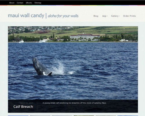 Maui Wall Candy portfolio image