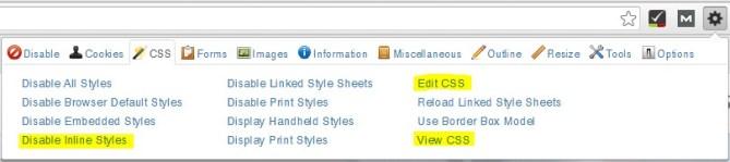 Extensión SEO Web Developer Toolbar