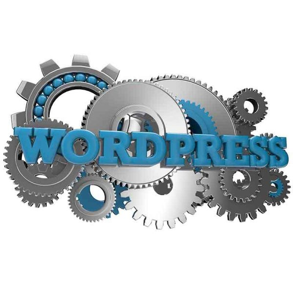 Wordpress Website Tune Up - Web Pro NJ