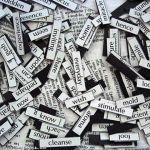El mundo de los seguros y su vocabulario