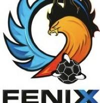 logo-fenix