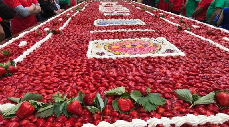 tarte-geante-fraises-confrerie-juin-2019