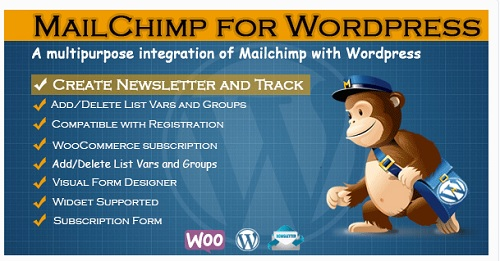 plugin wordpress suscriptores
