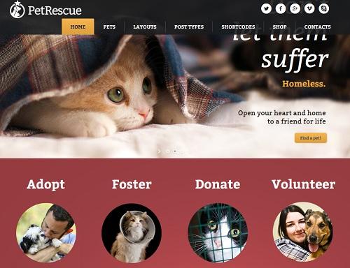 como crear blog de animales