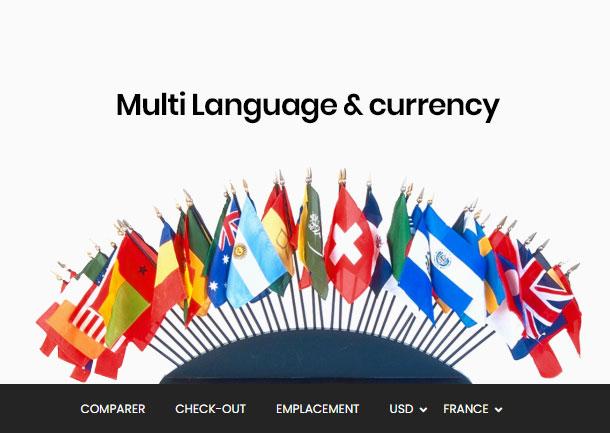 El mejor bosque temático de Shopify: múltiples idiomas y múltiples monedas
