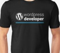desarrollador wordpress