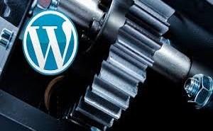 maxima seguridad wordpress