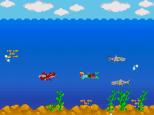 19- Sharks
