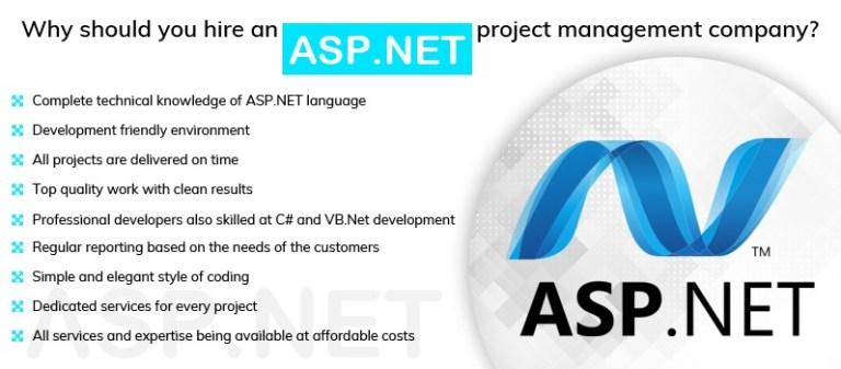 ASP.NET project management company