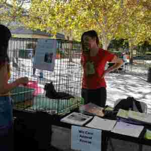 Our Oath in Action 2016, UC Davis