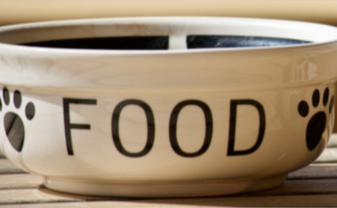 Food is Food
