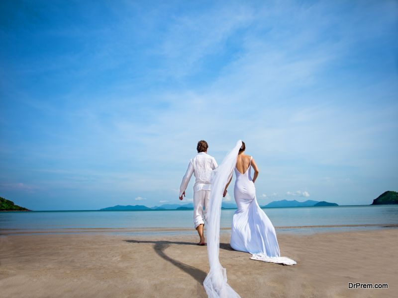 Vieques the Perfect Wedding Destination
