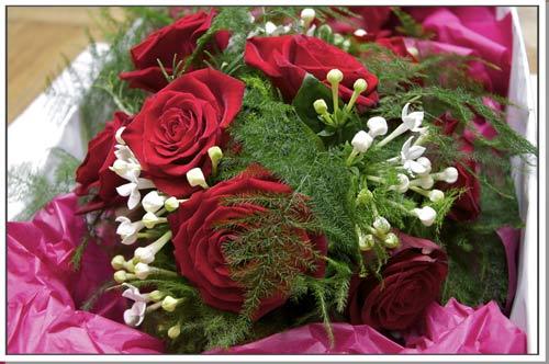 Blue Roses Arrangements
