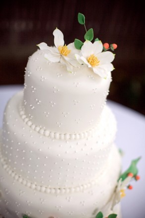 colors of wedding cakes