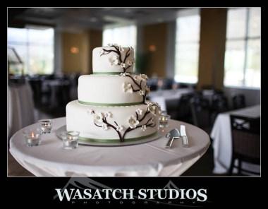 Wedding Cake Shapes for LDS wedding cakes