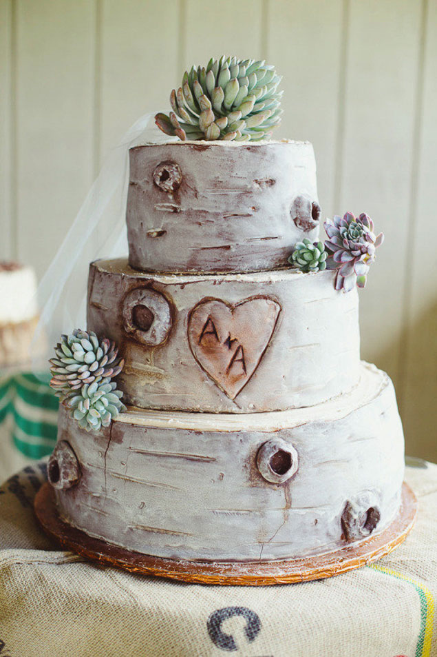 Succulent Wedding Cakes Photo Source     Closer to Love PhotographyPin it
