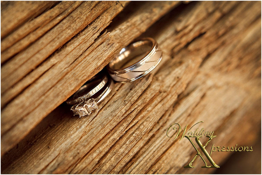 groom and bride's wedding rings
