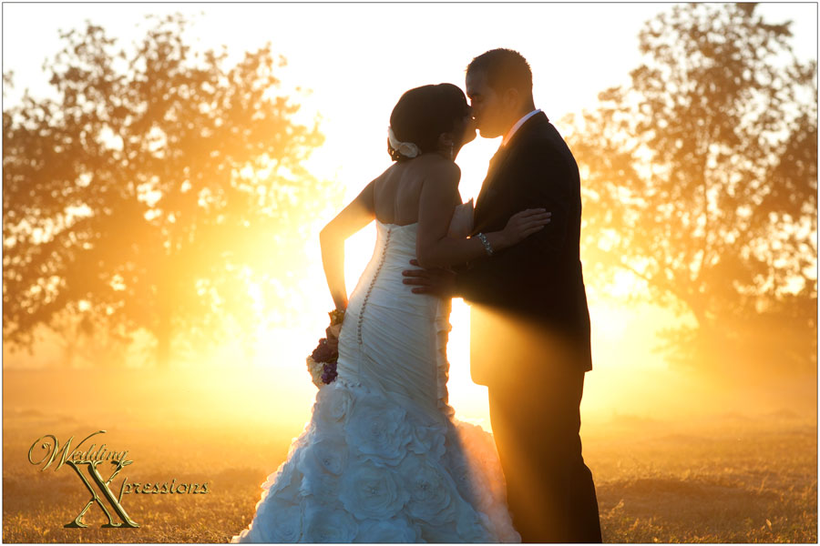 magical light at wedding