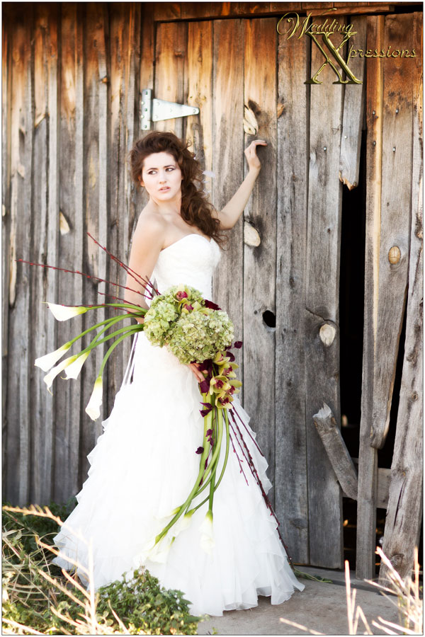 Kara's Bridal Dress with Black Swan Florist Bouquet