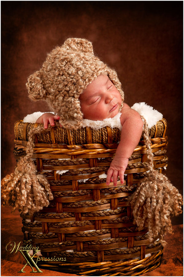 Newborn Baby portraits of baby in basket