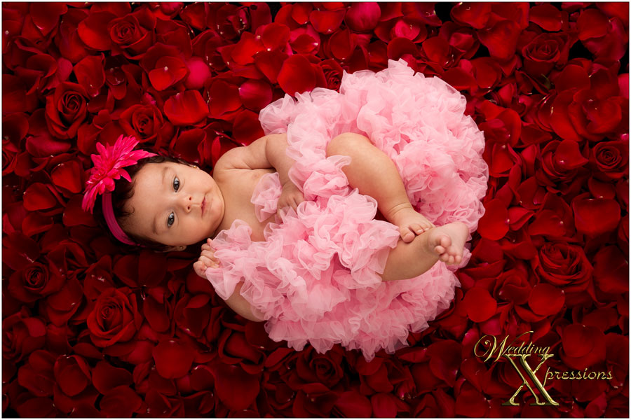 baby on a bed of roses