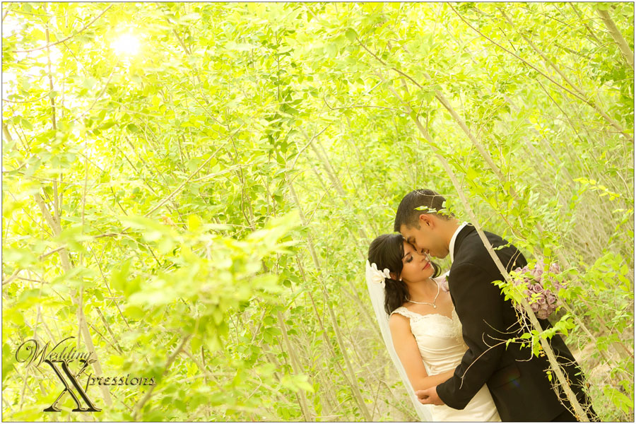 Wedding Xpressions Photography in El Paso Texas